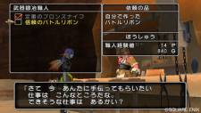 Dragon-Quest-X-Online-11