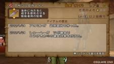 Dragon-Quest-X-Online-16