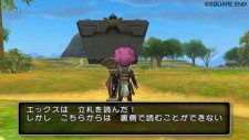 Dragon QuestX 25