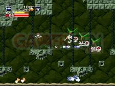 Images-Screenshots-Captures-Cave-Story-01122010-08