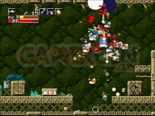 Images-Screenshots-Captures-Cave-Story-01122010-12