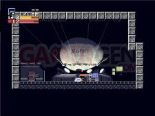 Images-Screenshots-Captures-Cave-Story-01122010-20