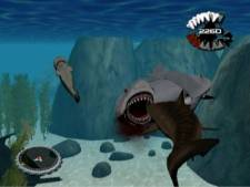 jaws_ultimate_predator_nintendo_wii-3