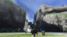 Monster-Hunter-3-Ultimate_2012_10-04-12_007