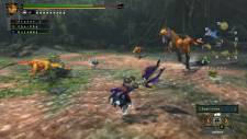 Monster-Hunter-3-Ultimate_2012_10-04-12_010