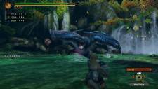 Monster-Hunter-3-Ultimate_2012_10-04-12_013