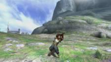 Monster Hunter 3 Ultimate mh3_hammer-5