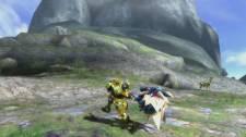 Monster Hunter 3 Ultimate mh3_hammer-7