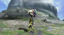 Monster Hunter 3 Ultimate mh3_hammer-8