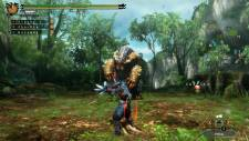 Monster Hunter 3 Ultimate MH3GHD_WiiU_SinglePlay_017_bmp_jpgcopy