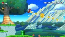 New-Super-Mario-Bros-U_screenshot (1)