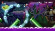 New-Super-Mario-Bros-U_screenshot (6)