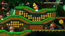 New-Super-Mario-Bros-U_screenshot (8)