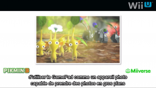 Nintendo Direct Miiverse Pikmin Capture d'écran 2013-01-23 à 15.12.27