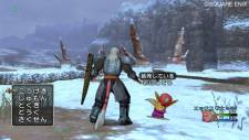 screenshot-capture-image-dragon-quest-x-10-wii-06
