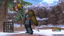 screenshot-capture-image-dragon-quest-x-10-wii-07