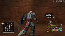 screenshot-capture-image-dragon-quest-x-10-wii-10