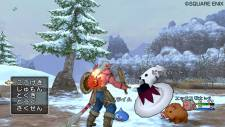 screenshot-capture-image-dragon-quest-x-10-wii-11