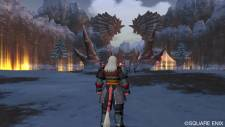 screenshot-capture-image-dragon-quest-x-10-wii-12