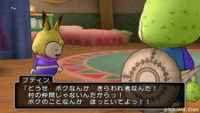 screenshot-dragon-quest-x-nintendo-wii-01
