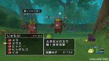 screenshot-dragon-quest-x-nintendo-wii-03