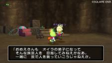 screenshot-dragon-quest-x-nintendo-wii-05