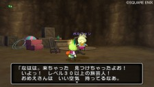 screenshot-dragon-quest-x-nintendo-wii-07