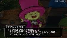 screenshot-dragon-quest-x-nintendo-wii-14
