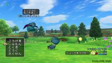 screenshot-dragon-quest-x-nintendo-wii-18