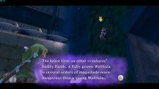 Skyward Sword8