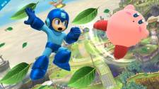 Super-Smash-Bros_11-06-2013_screenshot-4