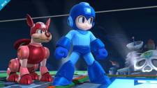 Super-Smash-Bros_11-06-2013_screenshot-5