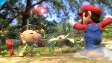 Super-Smash-Bros_12-07-2013_screenshot-1