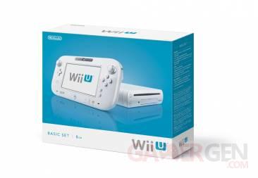 Wii U basic pack