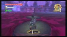 Zelda Skyward S17