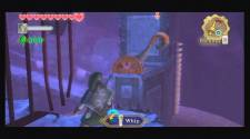 Zelda Skyward S19