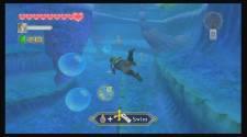 Zelda Skyward S28
