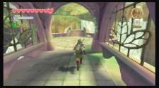Zelda Skyward S29