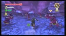 Zelda Skyward S34