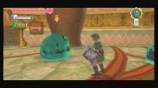 Zelda Skyward S6