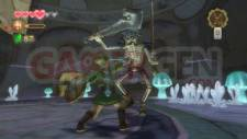 Zelda Skyward Sword 14